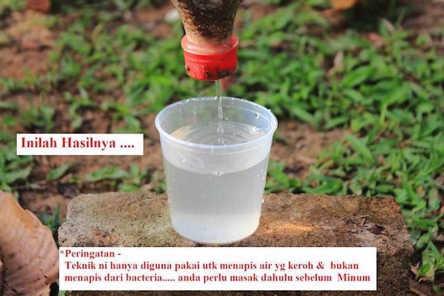 Tips Dapatkan Air Bersih di Dalam Hutan ~ Wordless Wednesday
