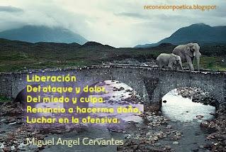 blogdeescritura-escritura-miguel-angel-cervantes-liberacion