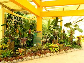 Bromeliário do Jardim Botânico do Rio de Janeiro