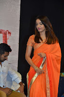 Thappu Thanda Tamil Movie Audio Launch Stills  0011.jpg