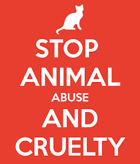 Stop animal abuse and cruelty