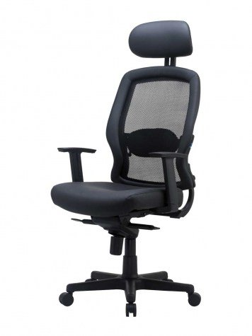 An Ergonomic Office Chair Provides Lower Back Support, Promotes Good  Posture And Helps Alleviate Back Pain.