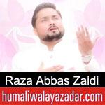 https://manqabat.humaliwalayazadar.com/2019/02/raza-abbas-zaidi-manqabat-2019.html