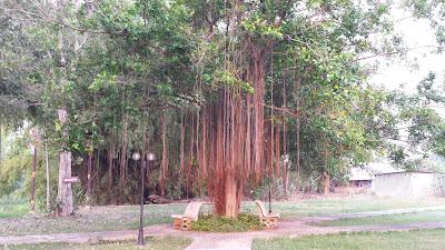 Park in Wat Sing Thailand