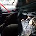 LOOK: Babaeng Lasing na Sumakay Sa Uber Nag-viral sa Social Media