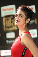 Meenakshi Dixit in Red One Shoulder Red Zipped up gown at IIFA Utsavam Award 32.JPG