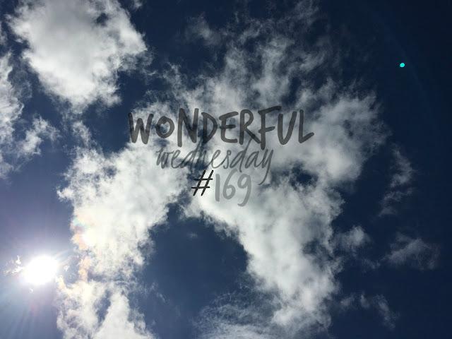 Wonderful Wednesday #169