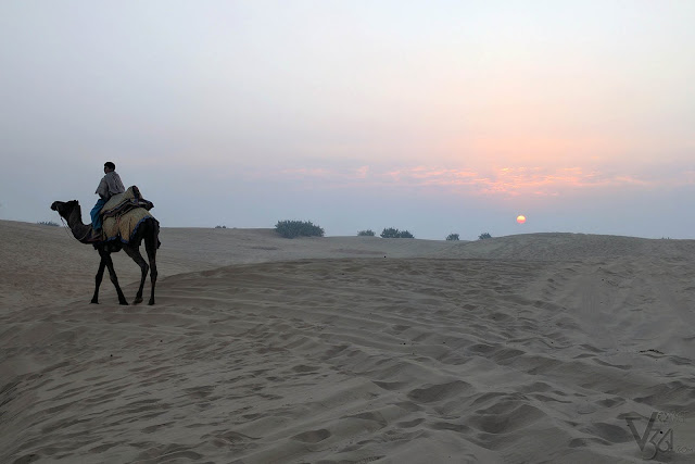 Sunrise at the Thar desert, Kanoi