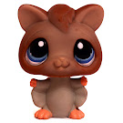 Littlest Pet Shop Multi Pack Sugar Glider (#1224) Pet