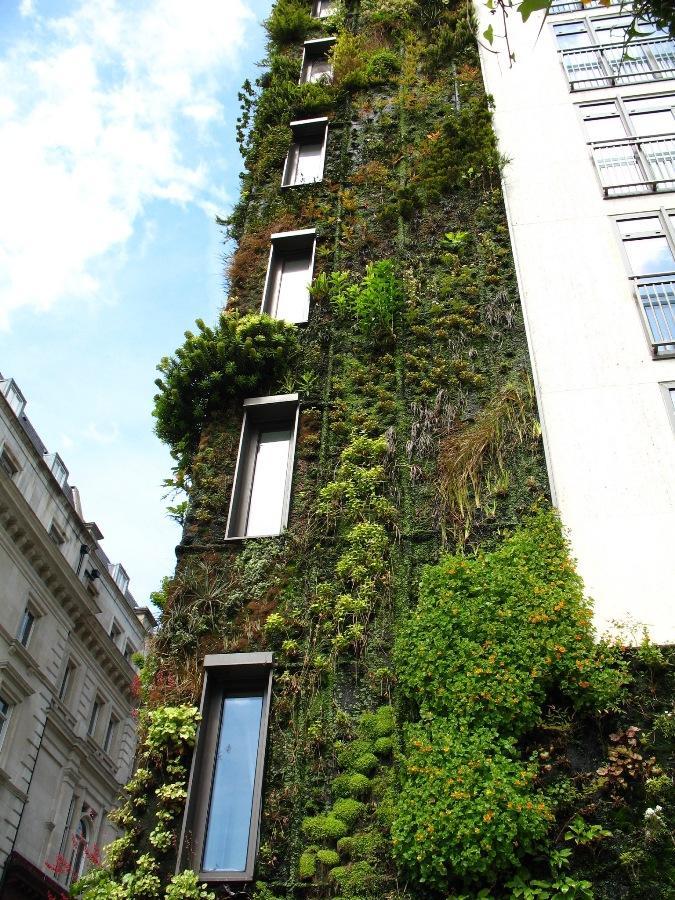 Aspundir: Vertical Garden - Creative Building