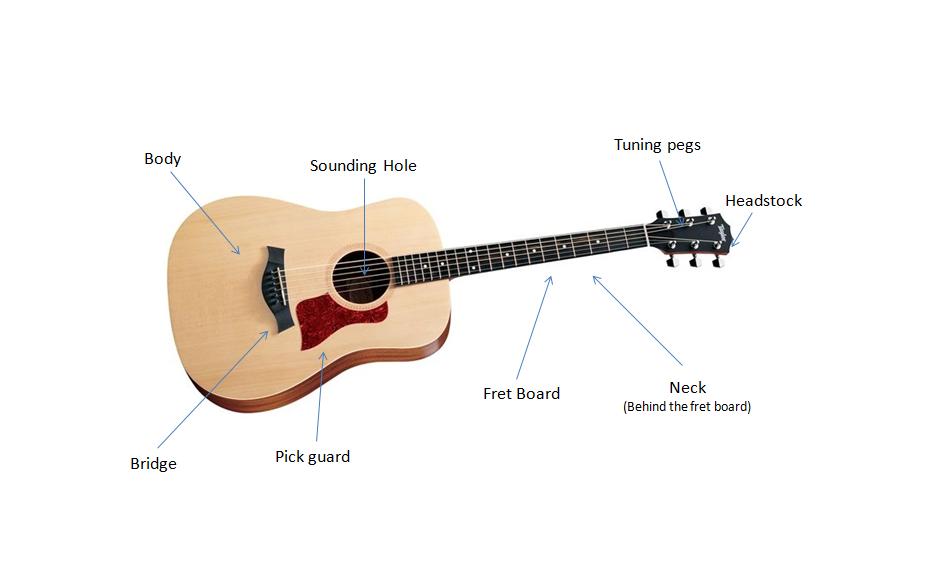find your fine guitar parts of an acoustic guitar. Black Bedroom Furniture Sets. Home Design Ideas