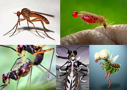 Sivrisineklerden kurtulmanın yolları