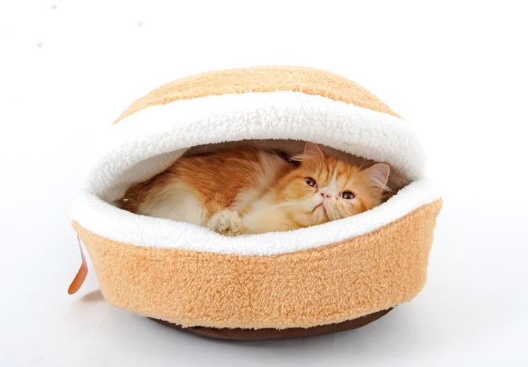 The Stuffs You Need for Raising a Cat