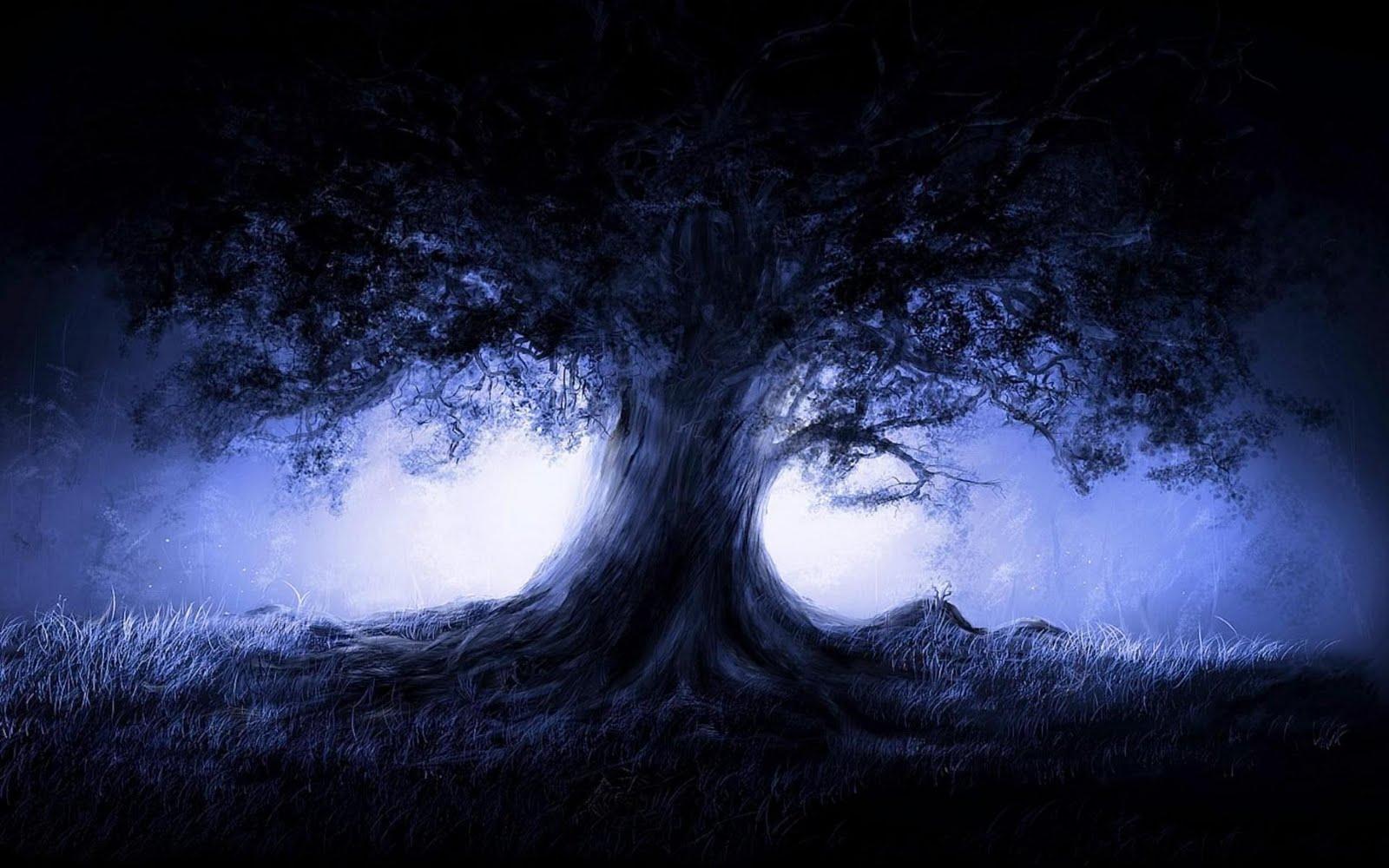 Imagem De Fundo - Árvore Com Luz Por Trás