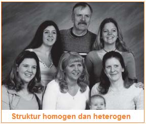 Klasifikasi Struktur Sosial - Struktur homogen dan heterogen