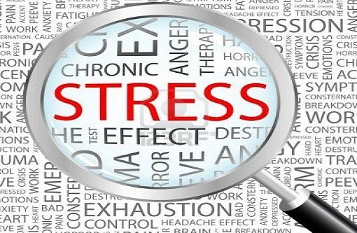 Panduan Stress~Cara Khusus Agar Anda Tidak Stress