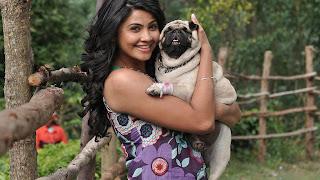 Daisy shah smile dog hd wallpaper