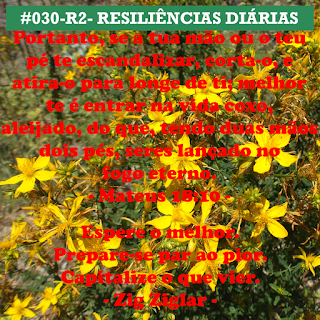030-R2- RESILIÊNCIA 2