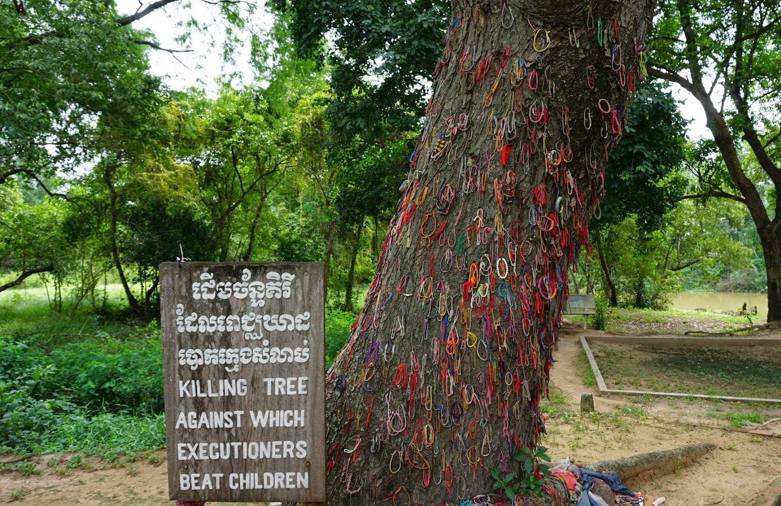 The killing tree