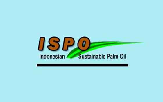 Indonesian Sustainable Palm Oil