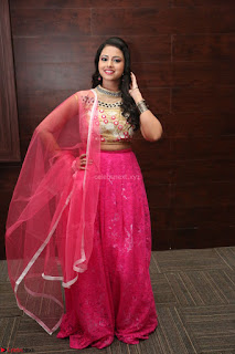 Geethanjali sizzles in Pink at Mixture Potlam Movie Audio Launch 027.JPG