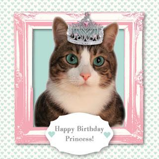 happy birthday black cat images