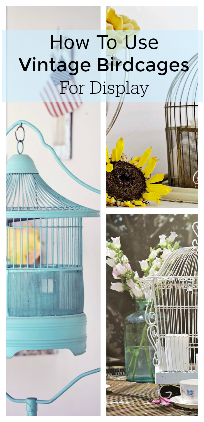 vintage birdcage display ideas