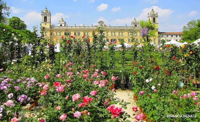 Il Palazzo Ducale di Colorno