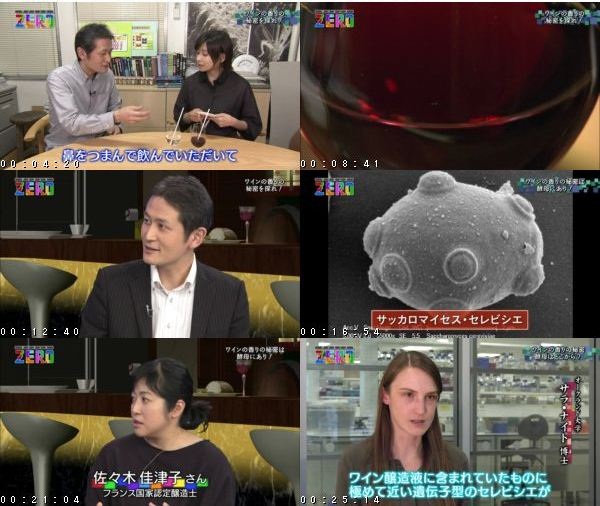 [TV-Variety] サイエンスZERO「秋の夜長のワイン夜話 香りのヒミツ大解明!」 – 2016.10.23