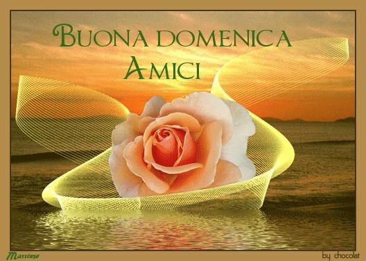 Preferenza Che La Vita Continua: BUONA DOMENICA - BON DIMANCHE - HAPPY SUNDAY  TS36