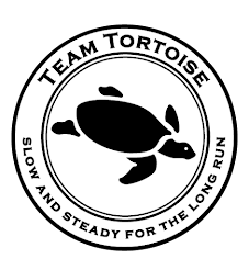 Team Tortoise Web Site