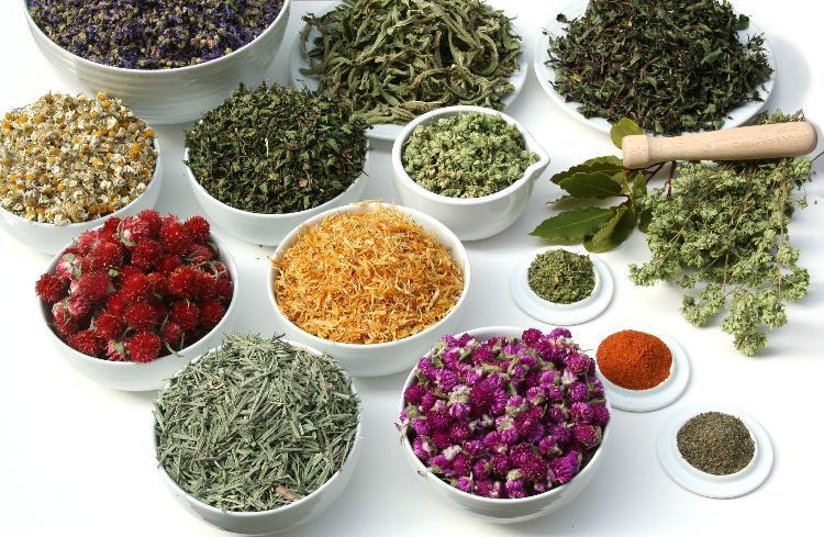 Tabela de infusões – Saiba que chá faz bem pra que