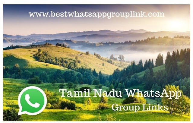 Best Whatsapp Group Link