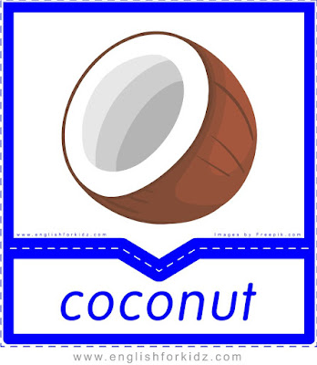 Coconut - English flashcards for the fruits, vegetables and nuts topic