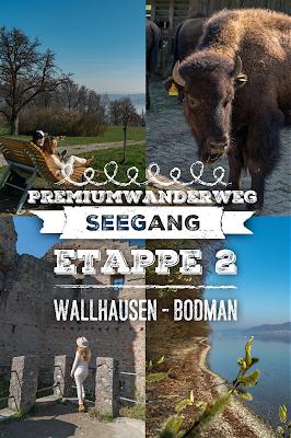SeeGang Etappe 2 Wilde Tobel und alte Burgen: Von Wallhausen über den Bodanrück nach Bodman-Ludwigshafen | Premiumwanderweg Bodensee Konstanz 21