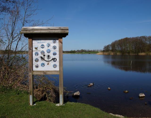 Kinder brauchen Abenteuer! Zwei spannende Abenteuer-Spielplätze in der näheren Umgebung von Kiel. Der Robinson-Spielplatz in Preetz liegt idyllisch am Postsee, dort können die Kids auch Enten bewundern.