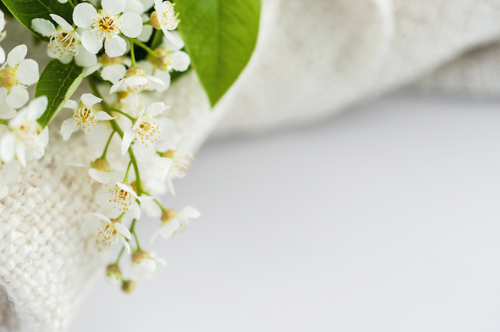 white flowers on bed