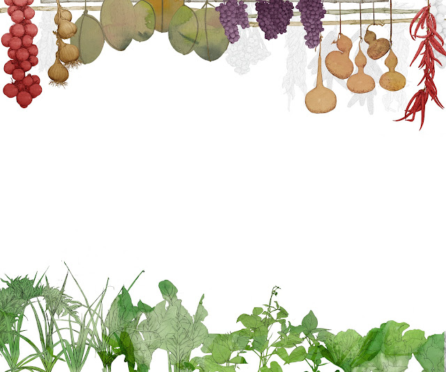 huerta, cultivos,colgado del techo, dibujo, Almacera