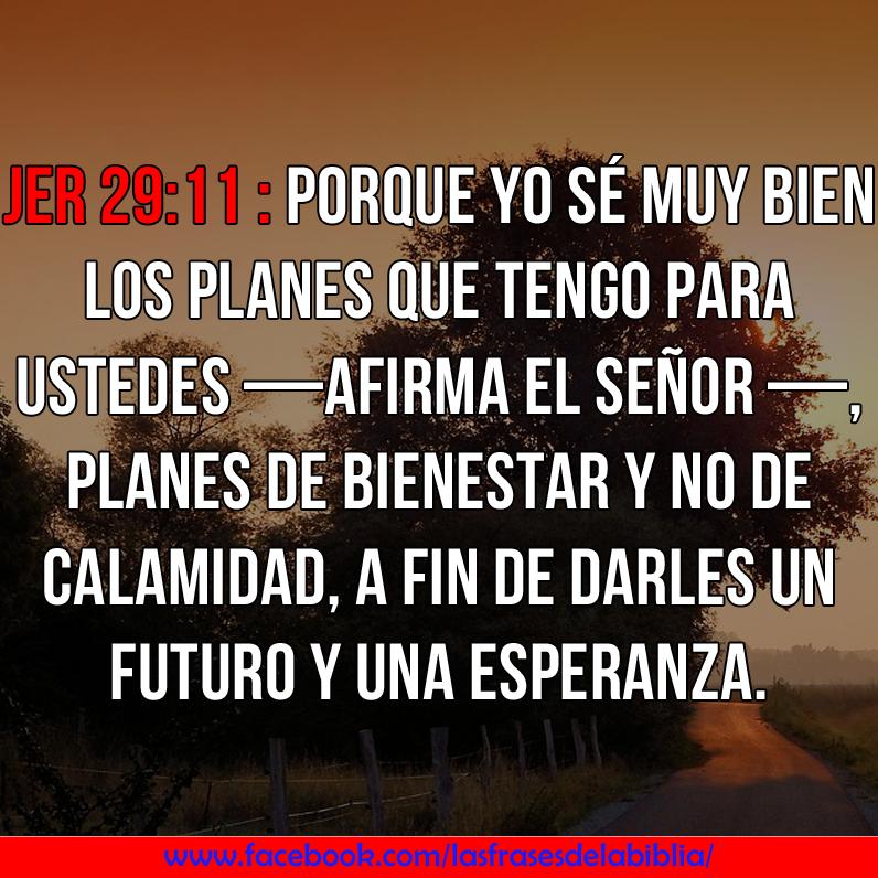 Hermosas Frases De La Biblia Frases De La Biblia
