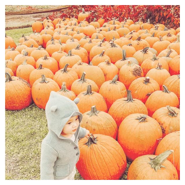 little boy standing beside big pumpkins