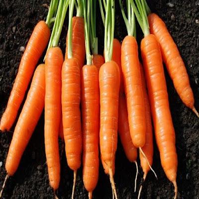 turuncu yiyeceklerin faydaları