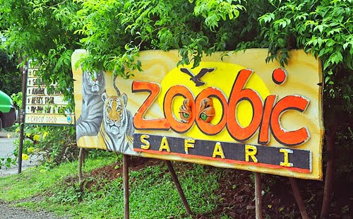 10 Reasons to Visit Zoobic in Subic Bay