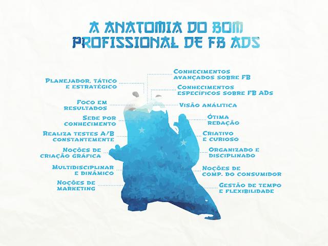 anatomia do profissionais de Facebook ads