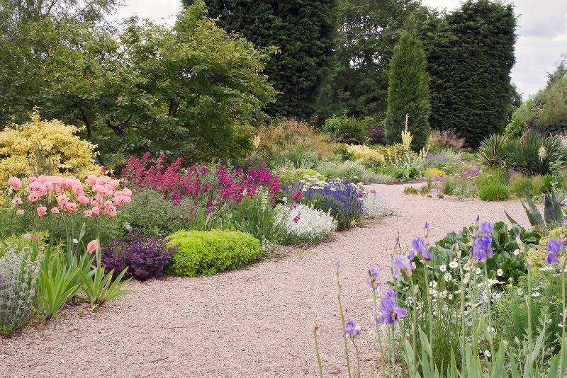 Libro de la semana el jard n de grava guia de jardin for Grava de colores para jardin