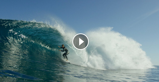 Surfing With Dolphins At Firing Box - Your Weekly Tube