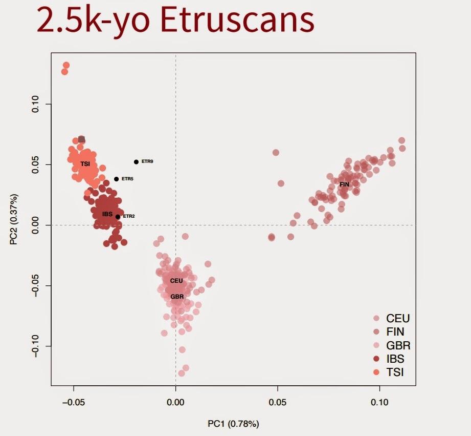 Ancient Dna Confirms Estruscans Were Southern European