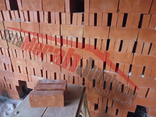 batu bata merah press standard