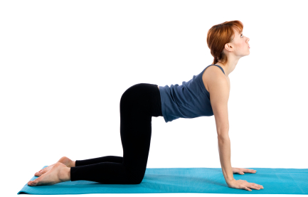 women's mag blog 10 yoga poses which will help you lose