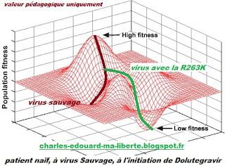 dolutegravir HIV tivicay resistance R263K VIH darwin mutation reservoir cure