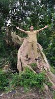 Pohon-langka-di-desa-durian